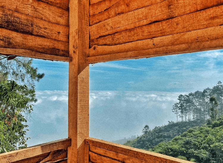 du lịch săn mây